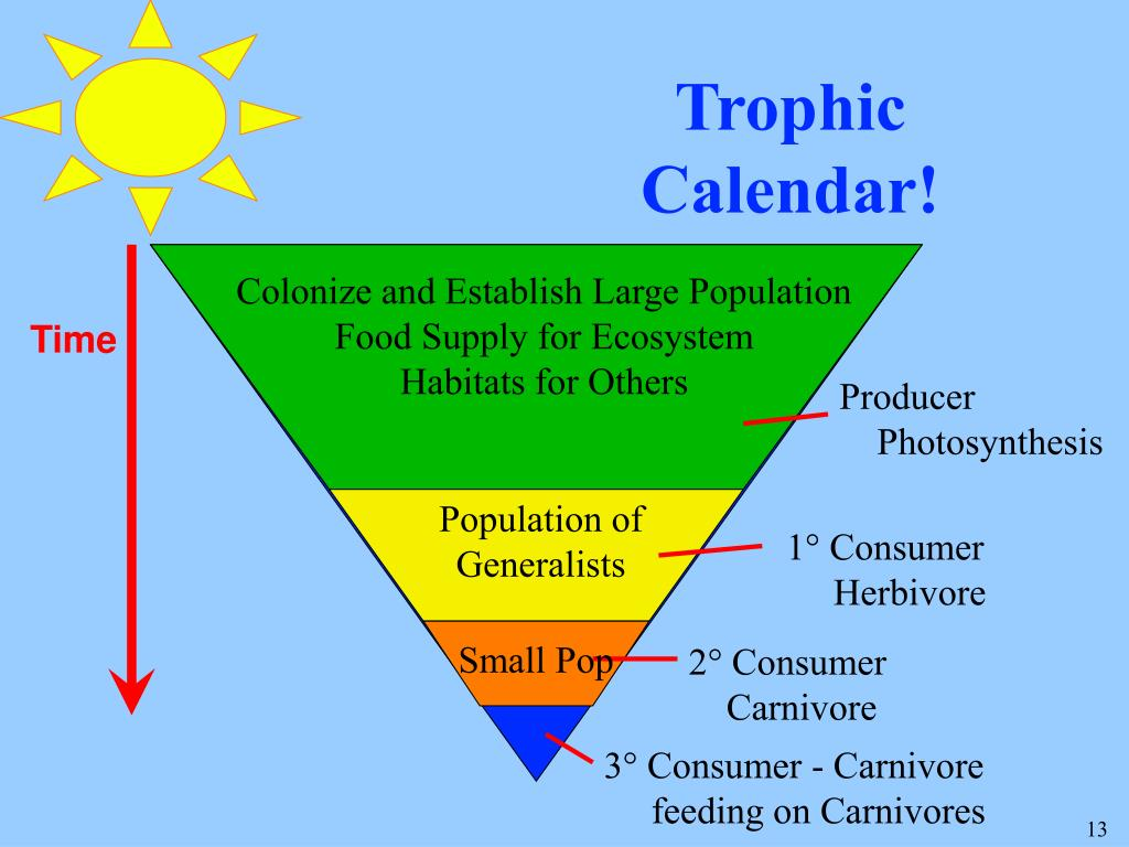 Trophic Calendar!
