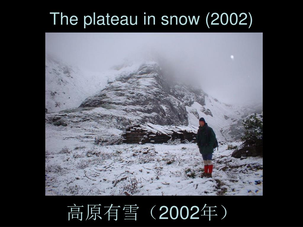 The plateau in snow (2002)