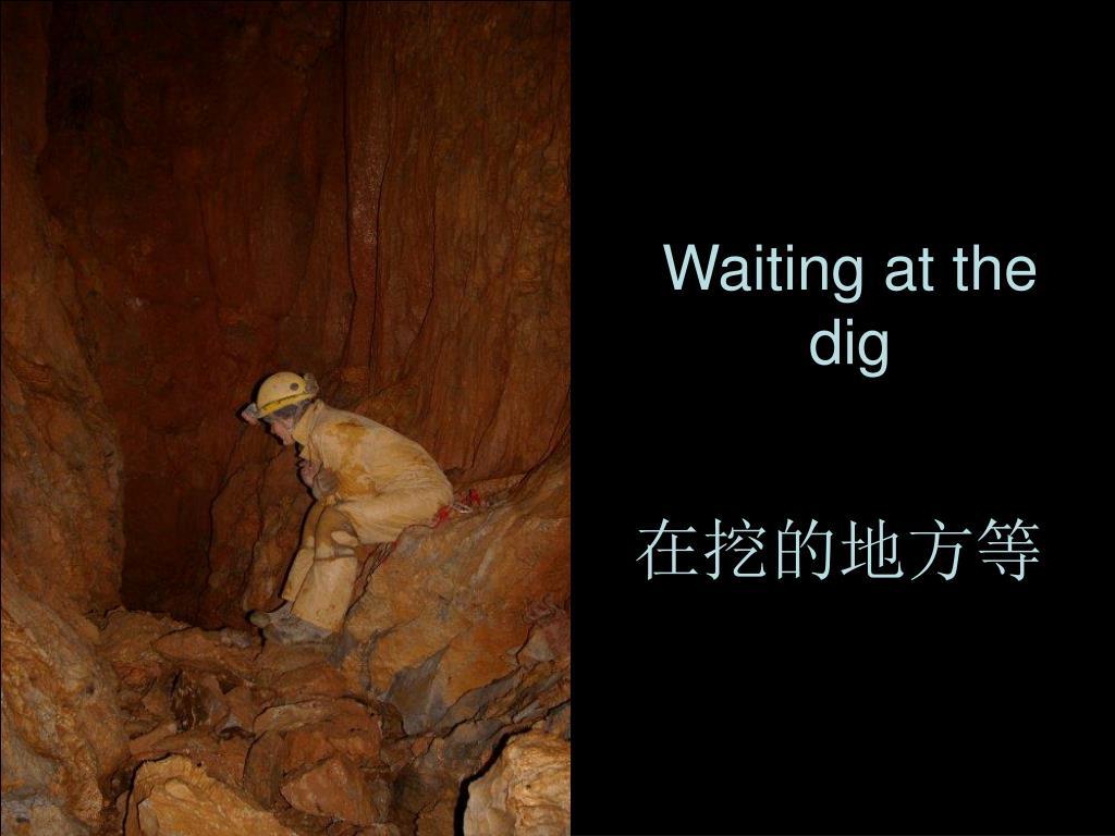 Waiting at the dig