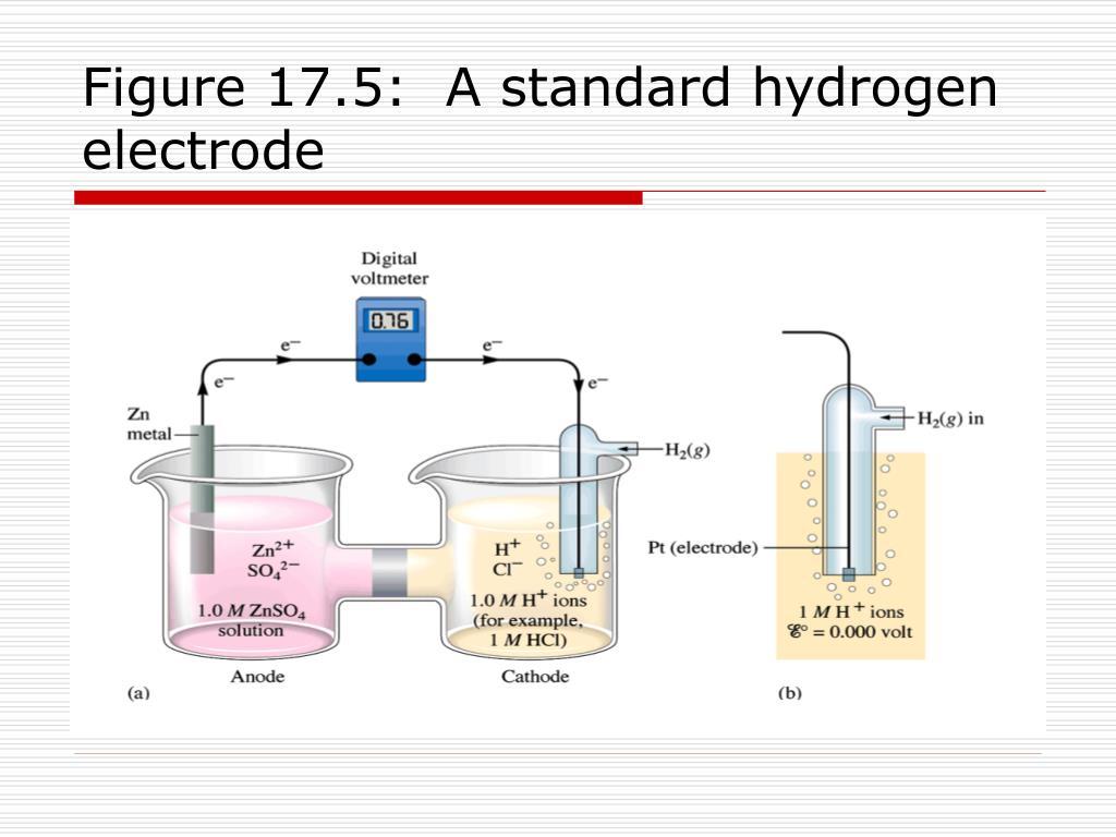 Figure 17.5:  A standard hydrogen electrode