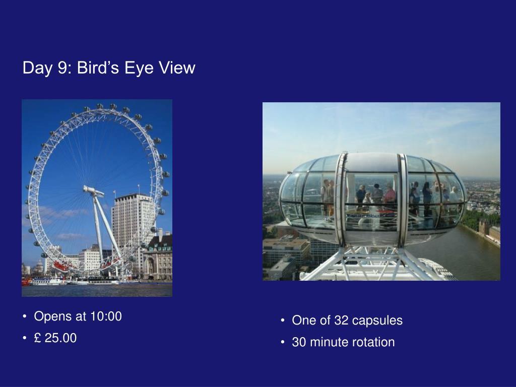 Day 9: Bird's Eye View