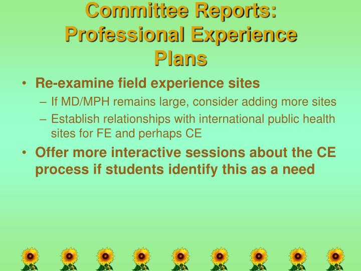 Committee Reports: Professional Experience