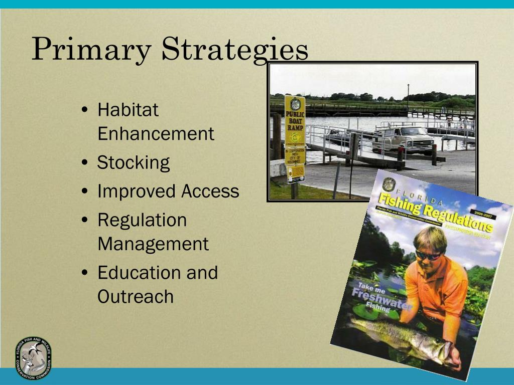 Primary Strategies