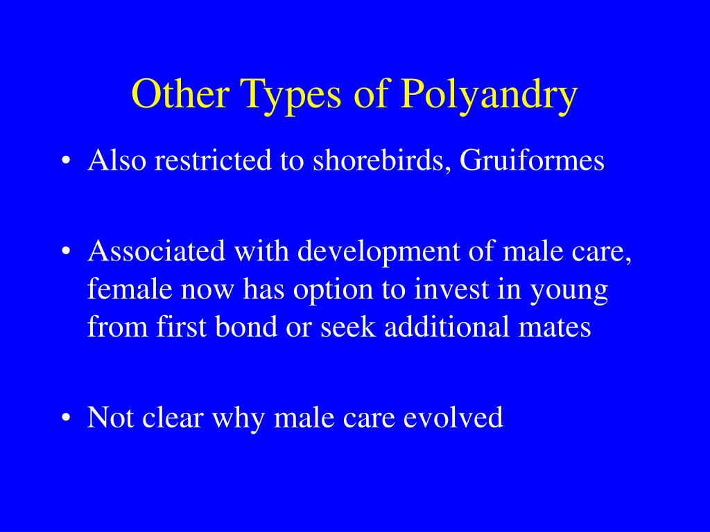 Other Types of Polyandry