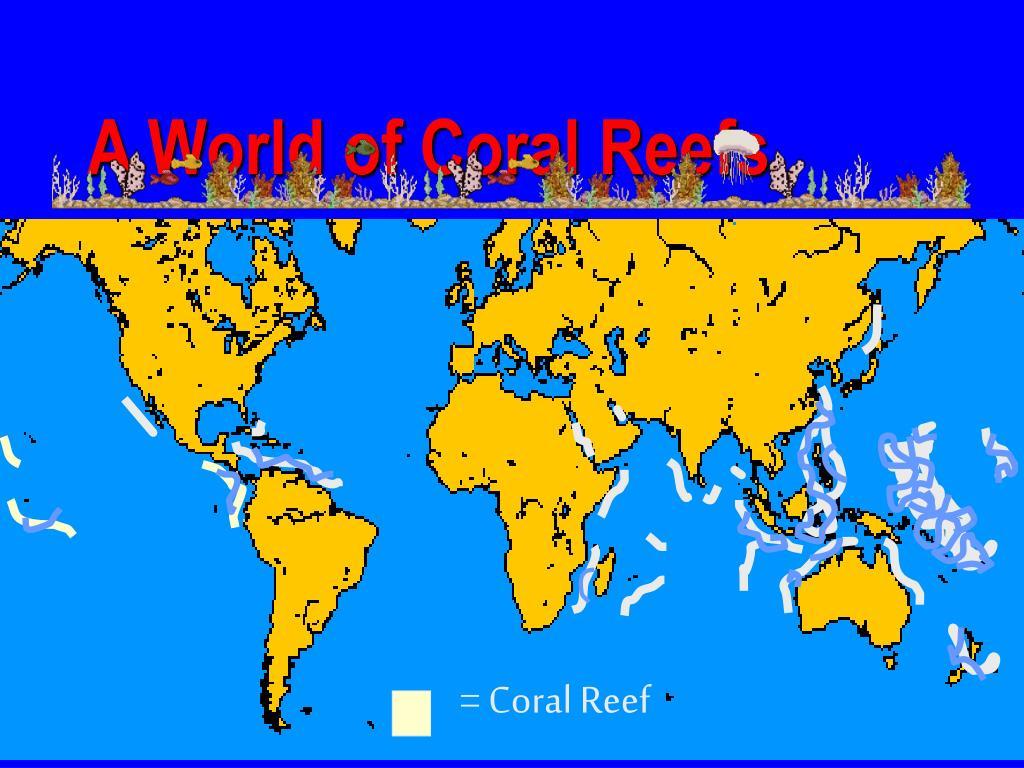 = Coral Reef