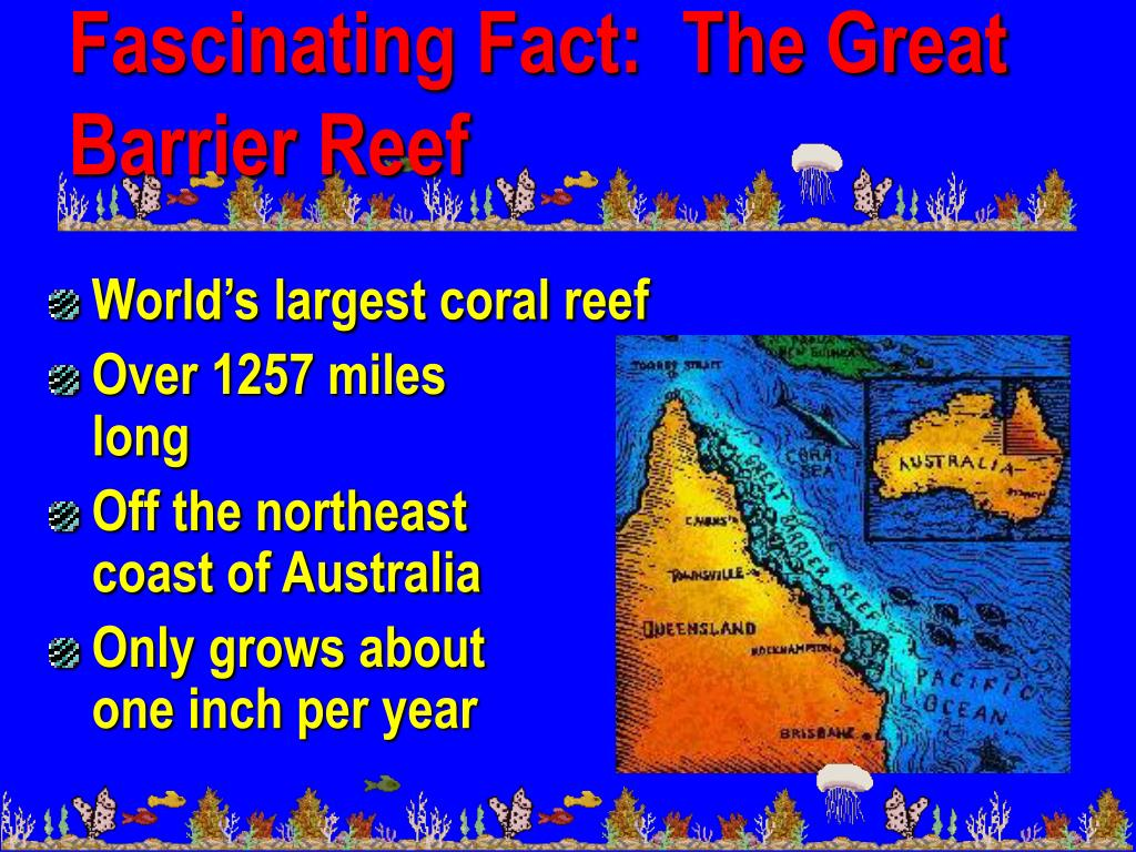 Fascinating Fact:  The Great Barrier Reef