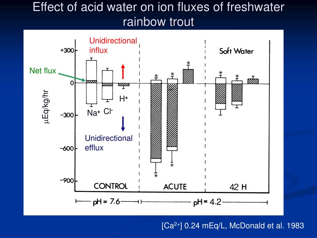 Effect of acid water on ion fluxes of freshwater rainbow trout