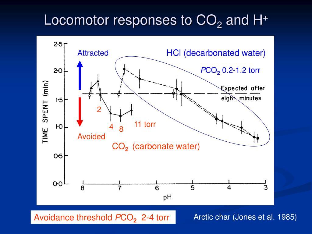 Locomotor responses to CO