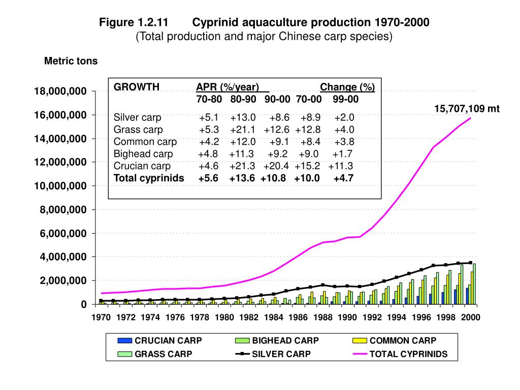 Figure 1.2.11	Cyprinid aquaculture production 1970-2000