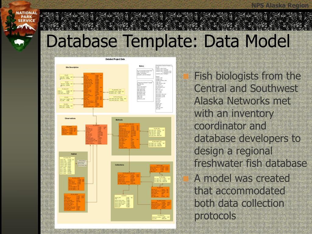 Fish biologists from the Central and Southwest Alaska Networks met with an inventory coordinator and database developers to design a regional freshwater fish database