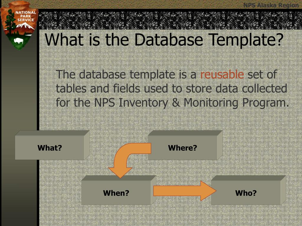 What is the Database Template?