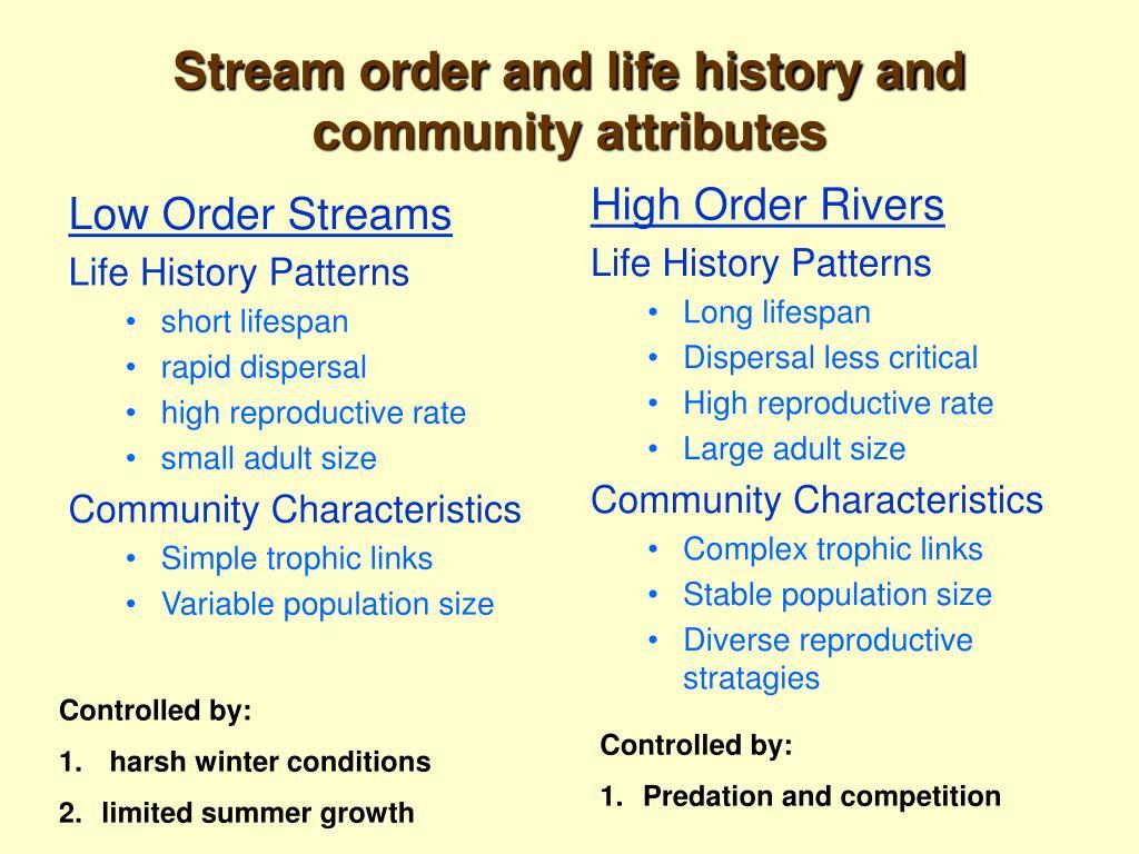Low Order Streams