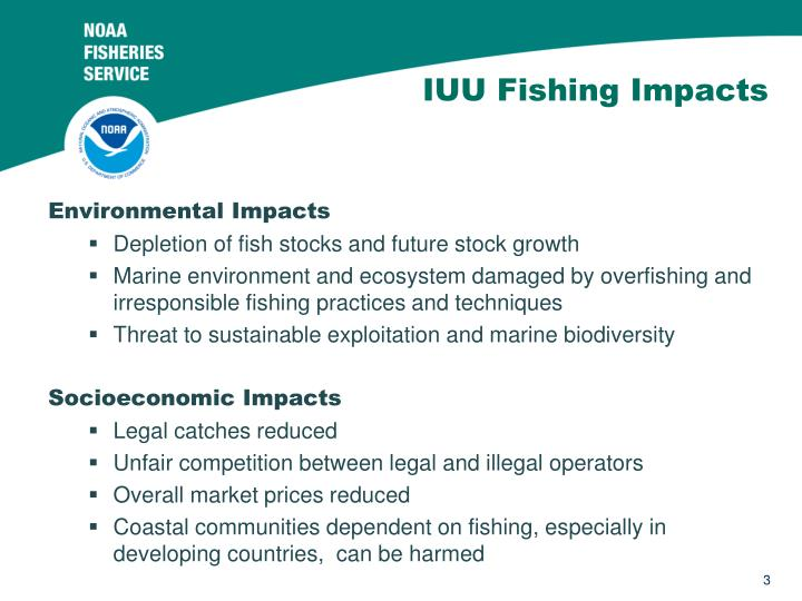 Iuu fishing impacts