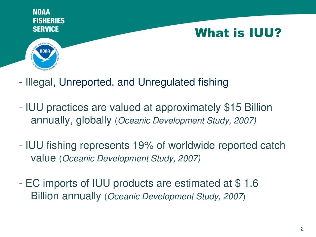 What is IUU?