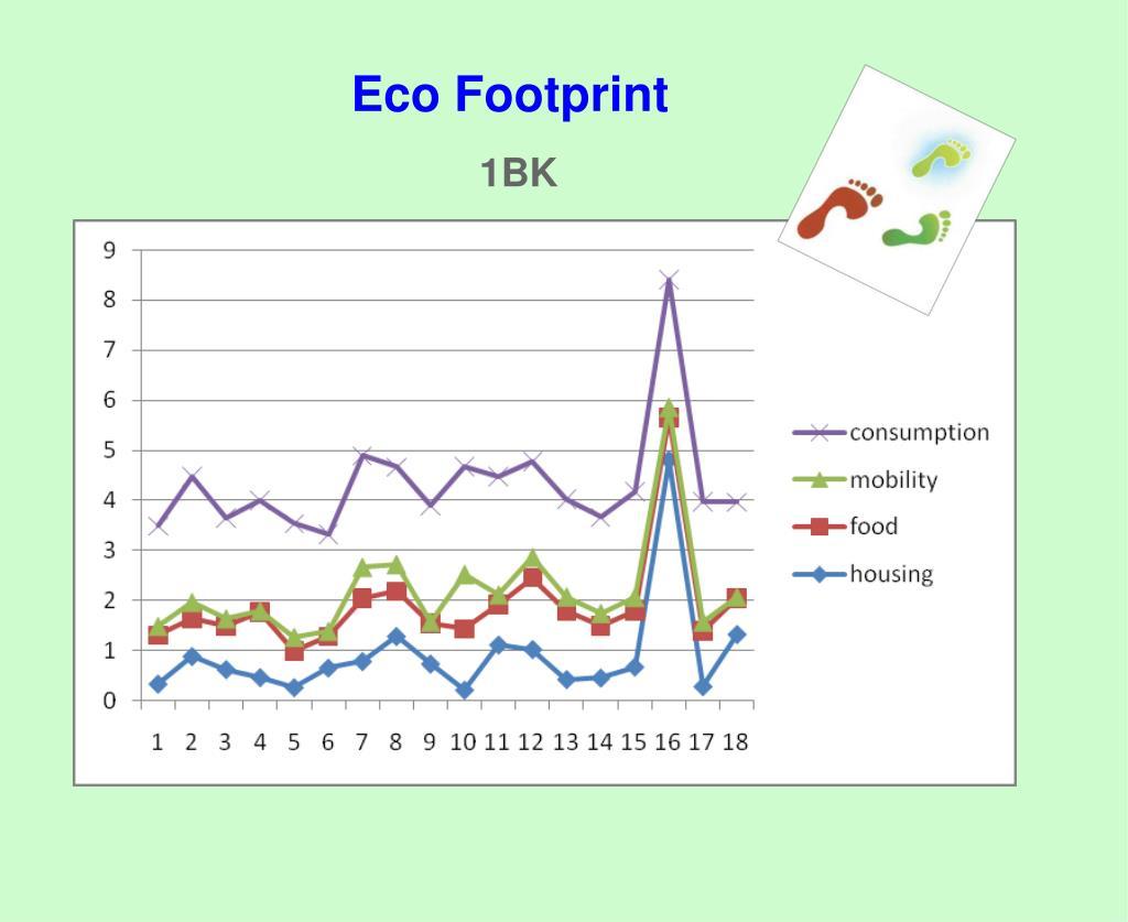 Eco Footprint