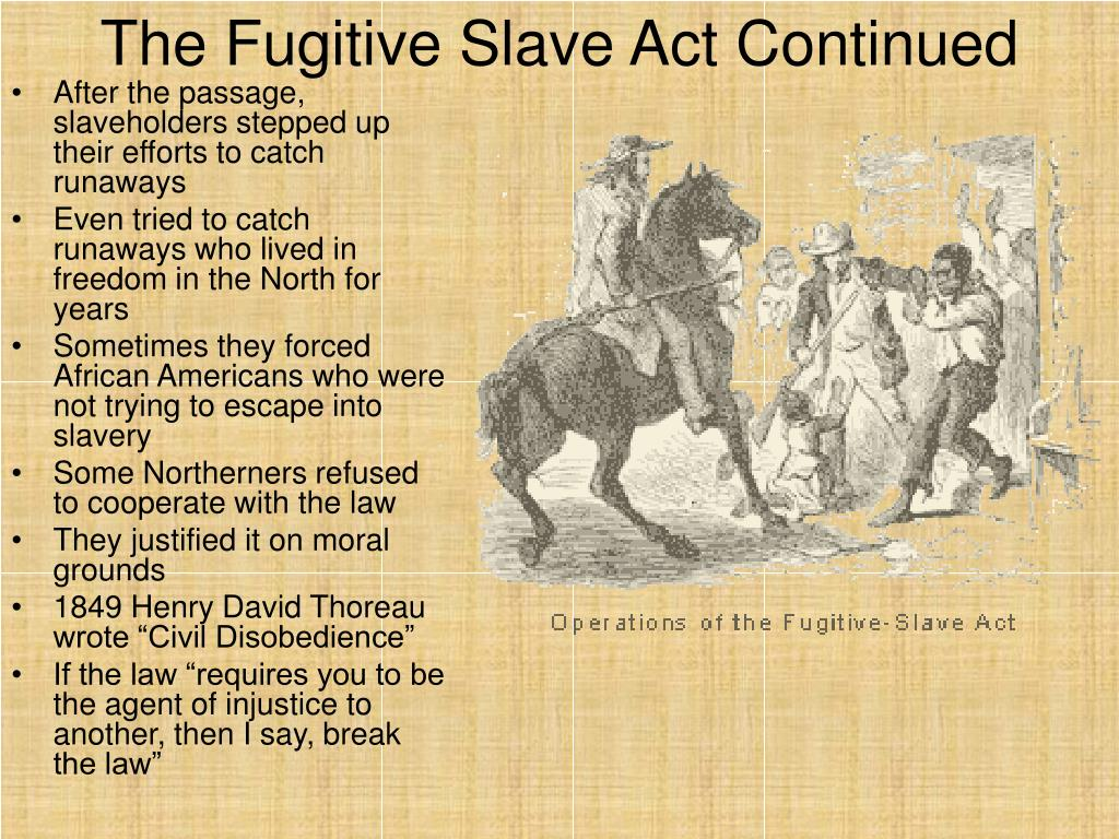 essays fugitive slave law