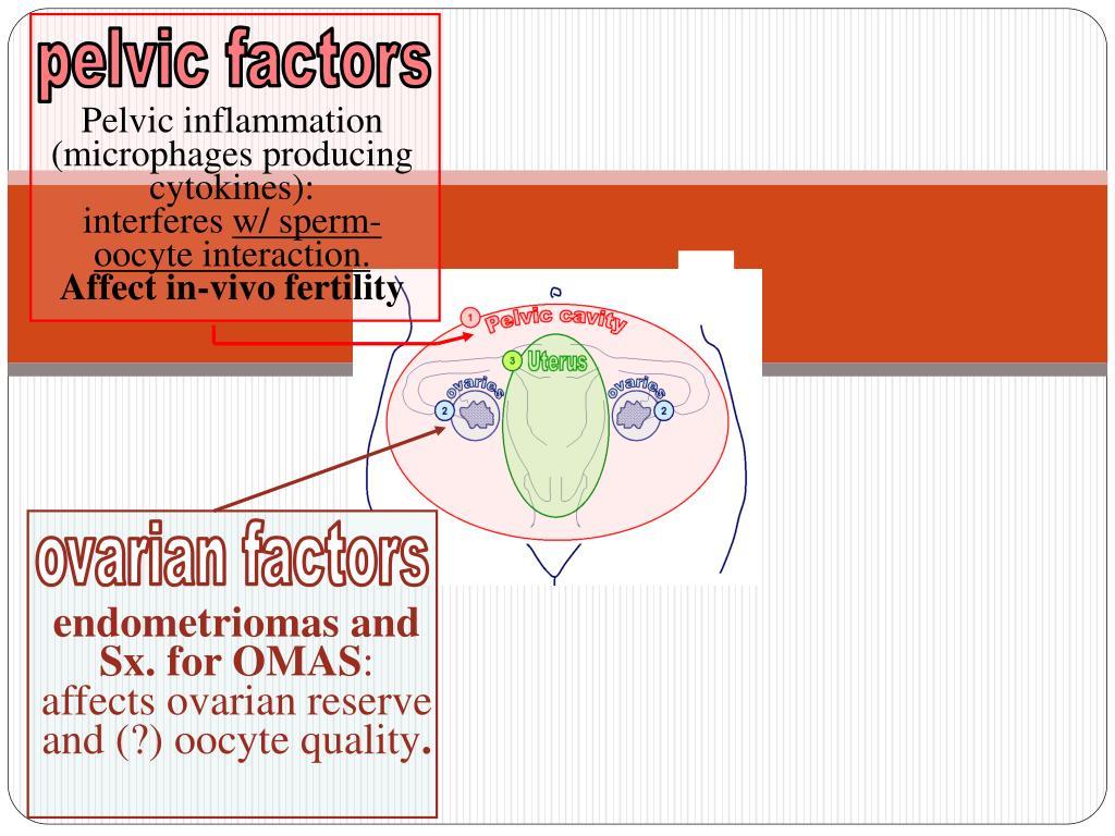 pelvic factors