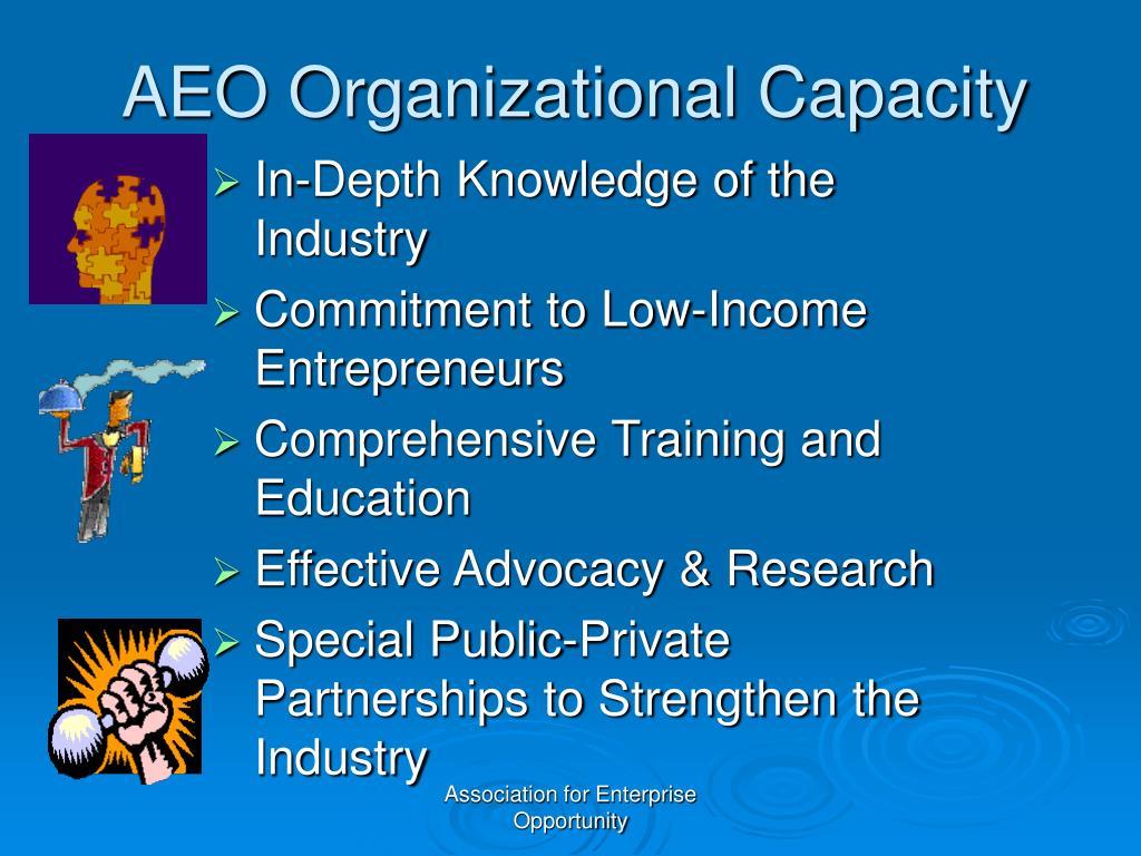 AEO Organizational Capacity