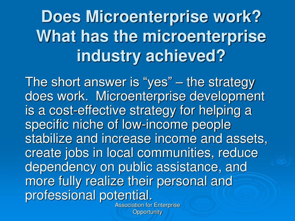 Does Microenterprise work?  What has the microenterprise industry achieved?
