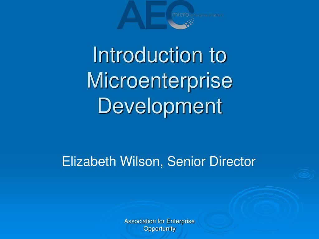 introduction to microenterprise development