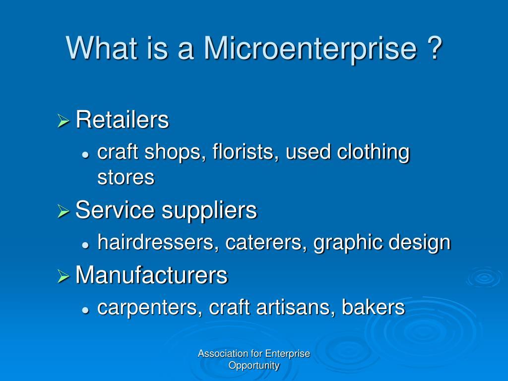 What is a Microenterprise ?