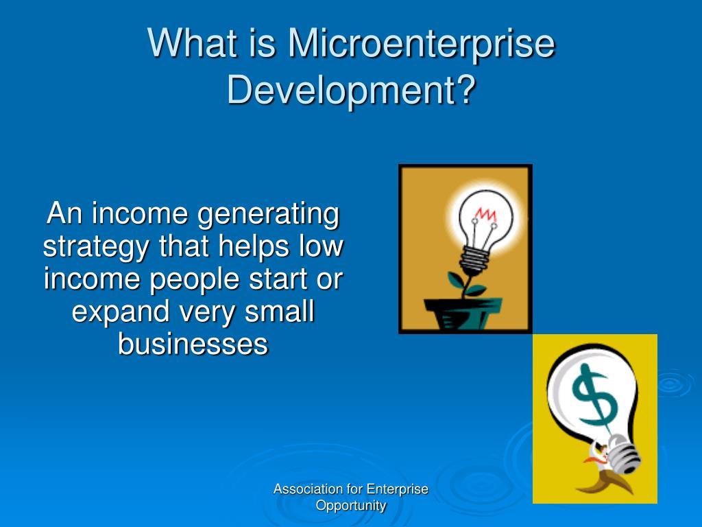 What is Microenterprise Development?