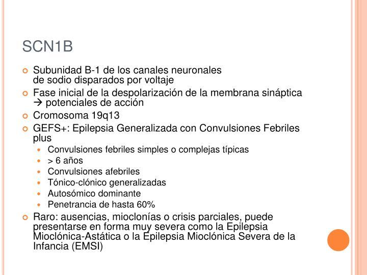 SCN1B