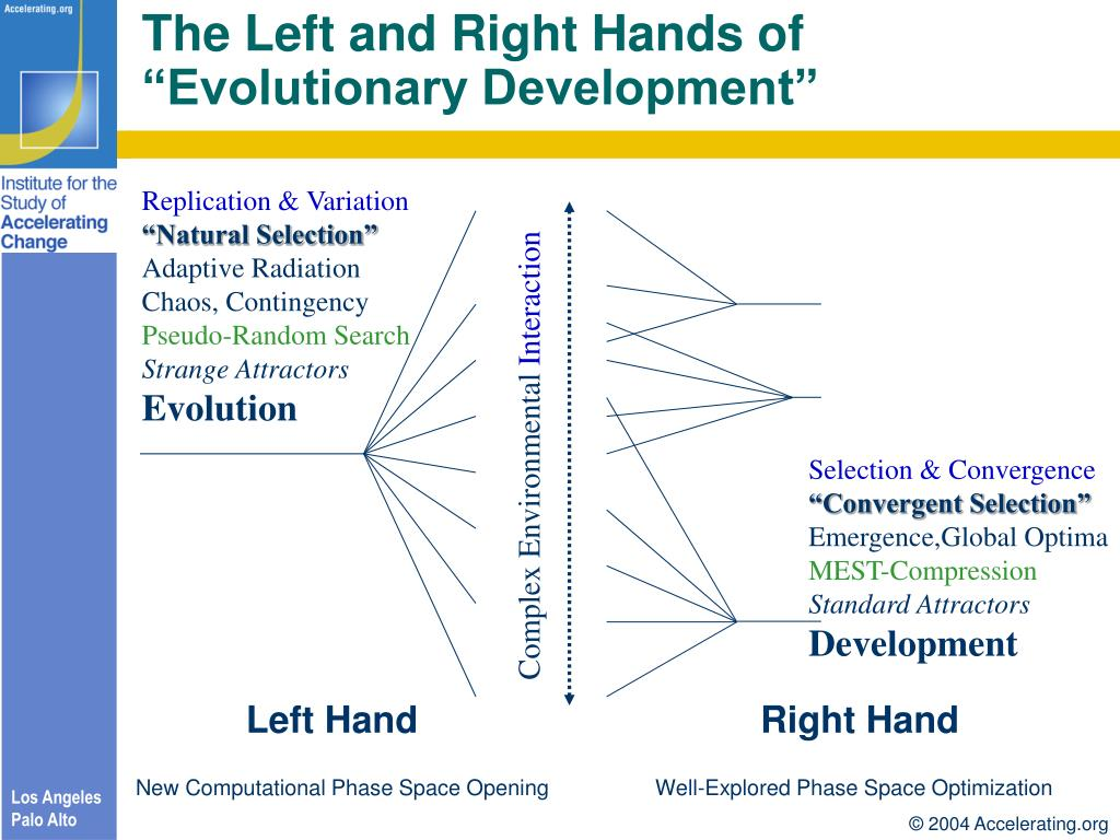 The Left and Right Hands of