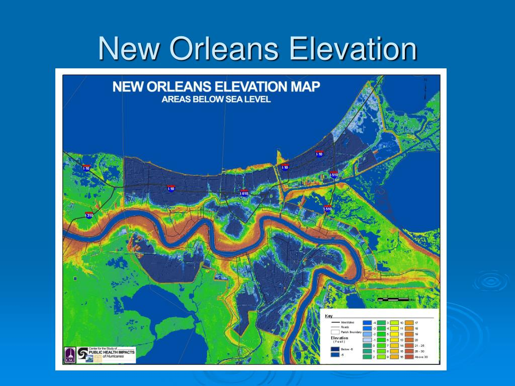 New Orleans Elevation