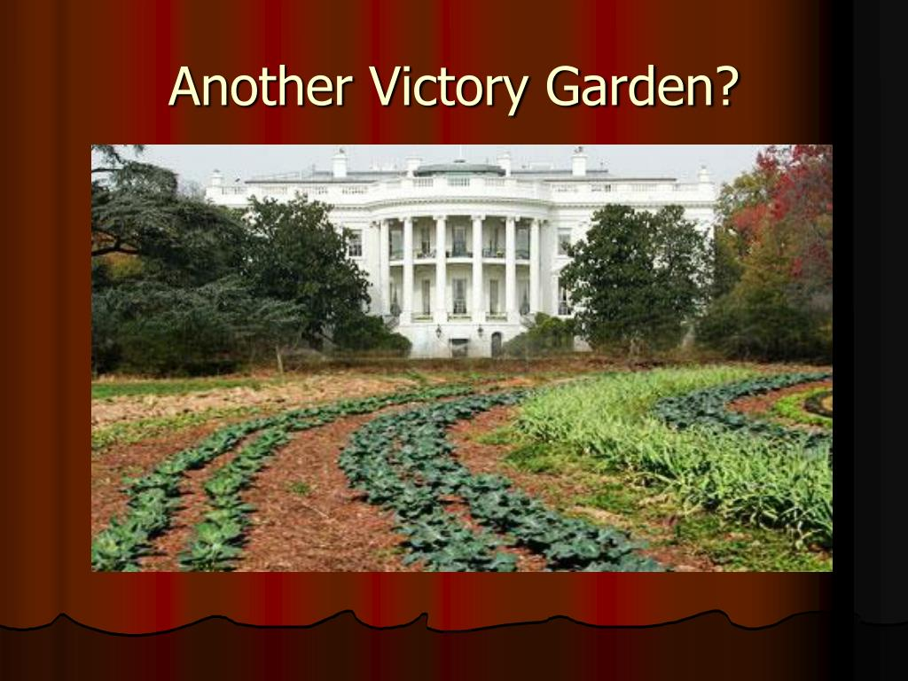 Another Victory Garden?