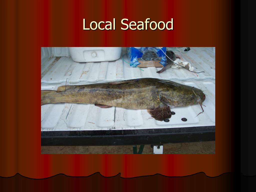 Local Seafood