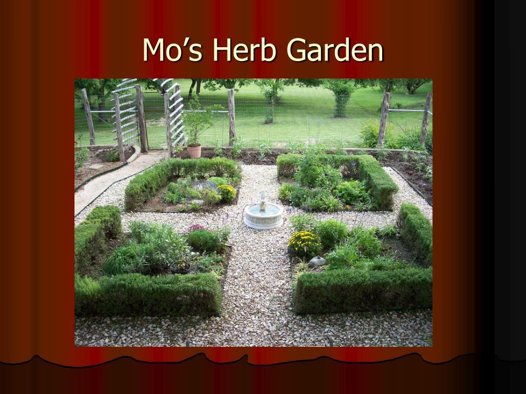 Mo's Herb Garden