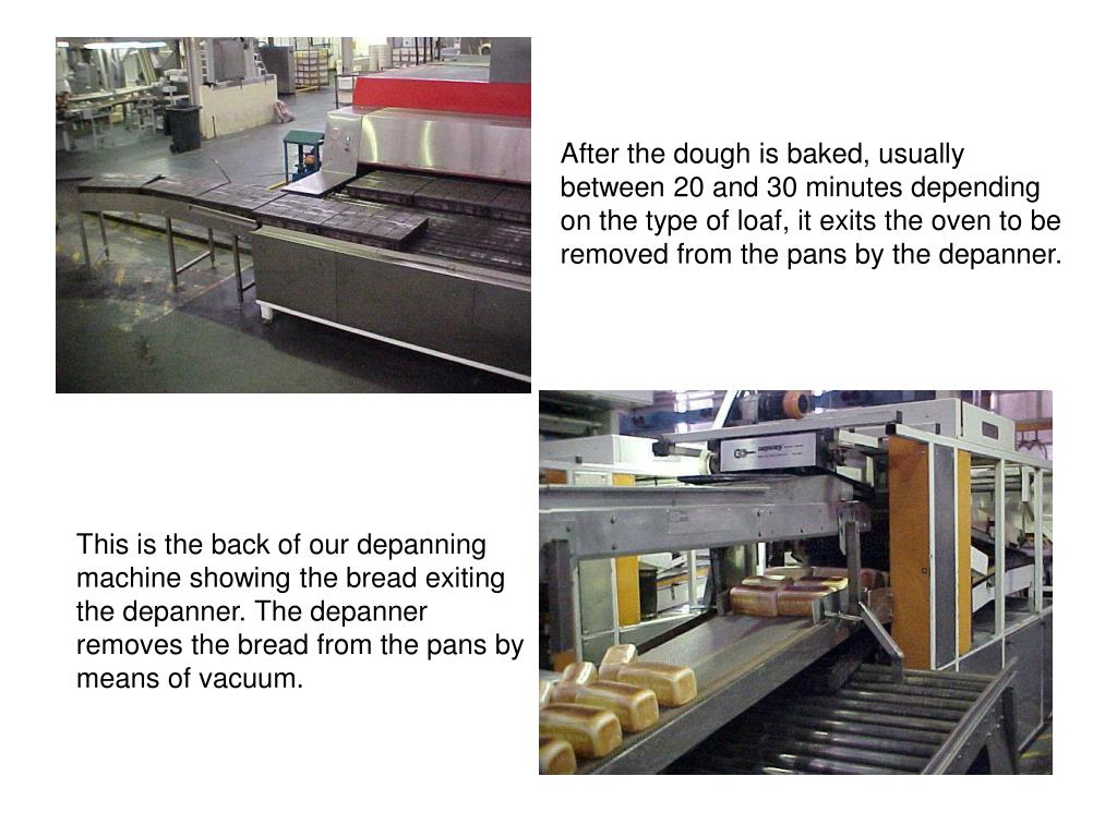 After the dough is baked, usually between 20 and 30 minutes depending on the type of loaf, it exits the oven to be removed from the pans by the depanner.