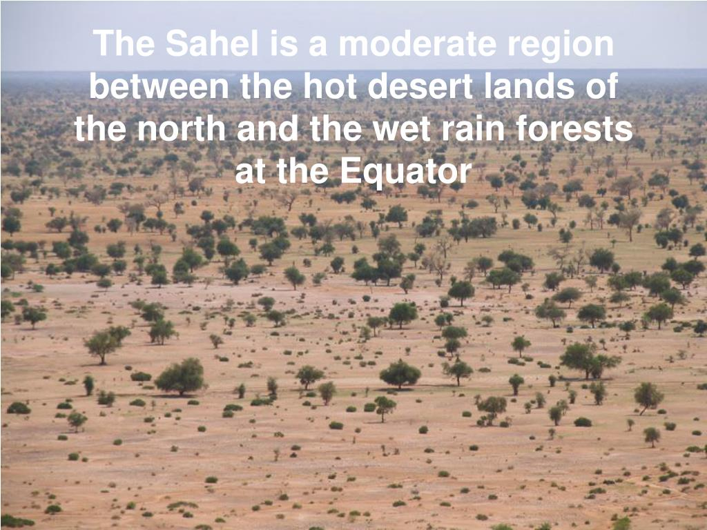 The Sahel is a moderate region between the hot desert lands of the north and the wet rain forests at the Equator