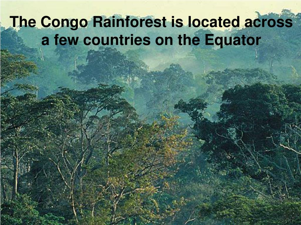 The Congo Rainforest is located across
