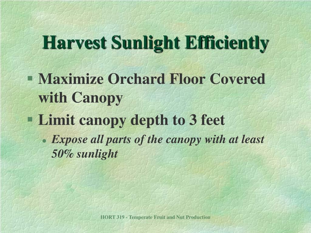 Harvest Sunlight Efficiently