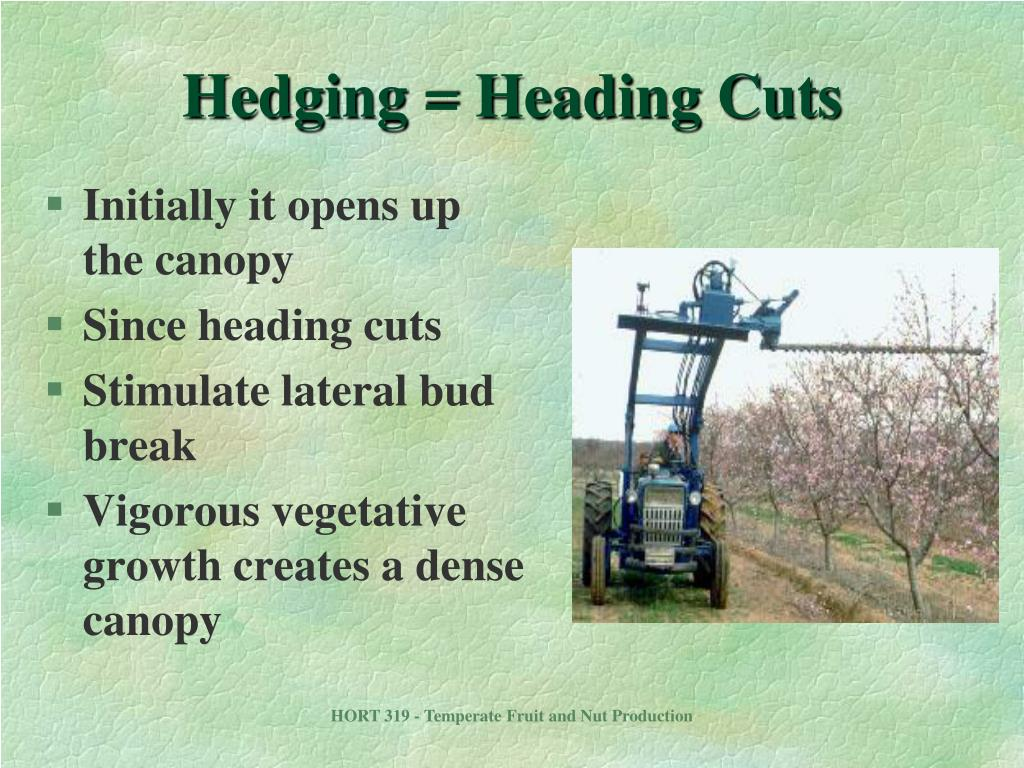 Hedging = Heading Cuts