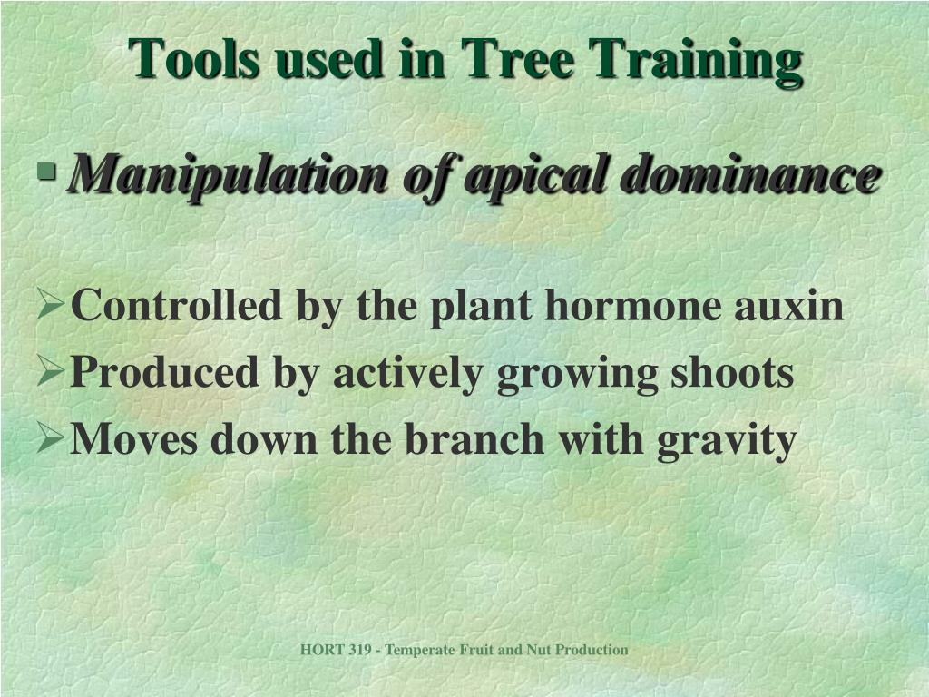 Tools used in Tree Training