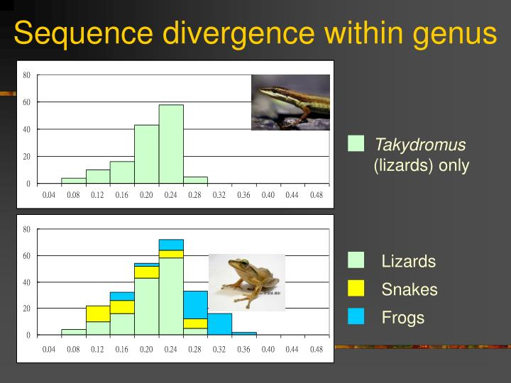 Sequence divergence within genus