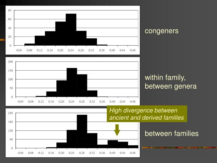 High divergence between ancient and derived families