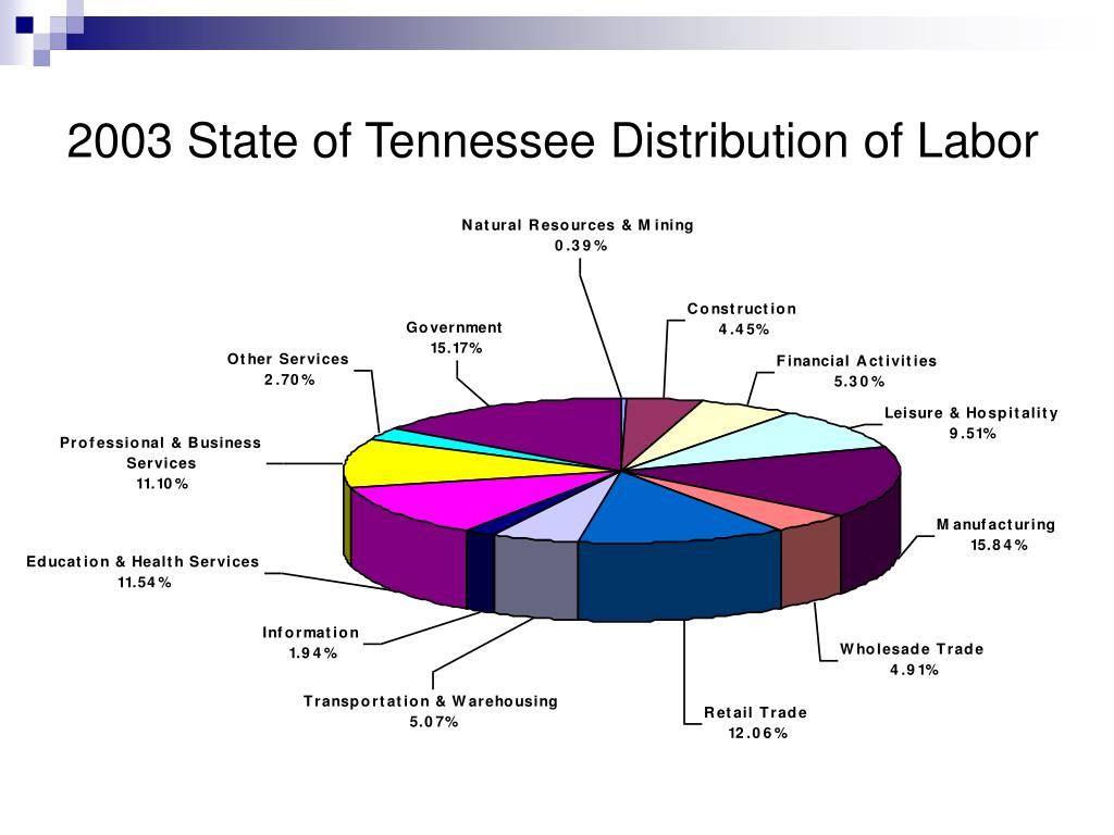 2003 State of Tennessee Distribution of Labor