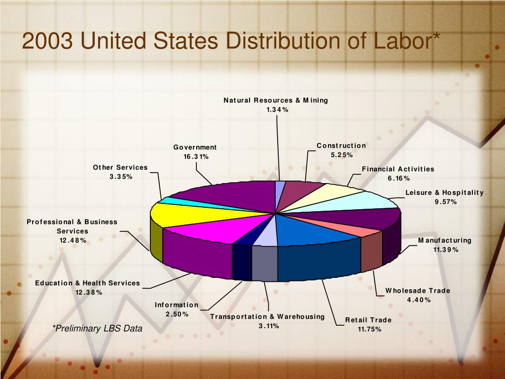 2003 United States Distribution of Labor*