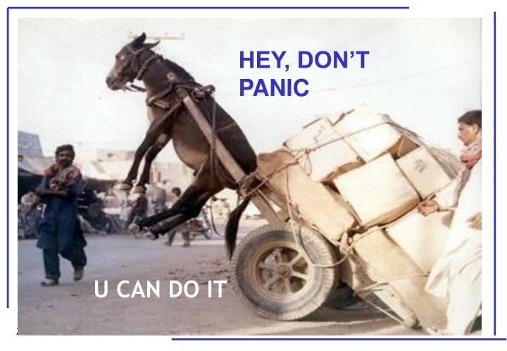 HEY, DON'T PANIC