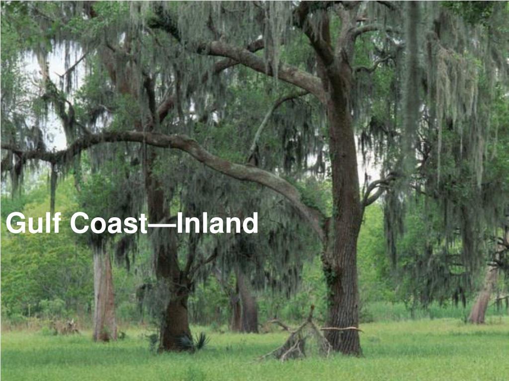 Gulf Coast—Inland