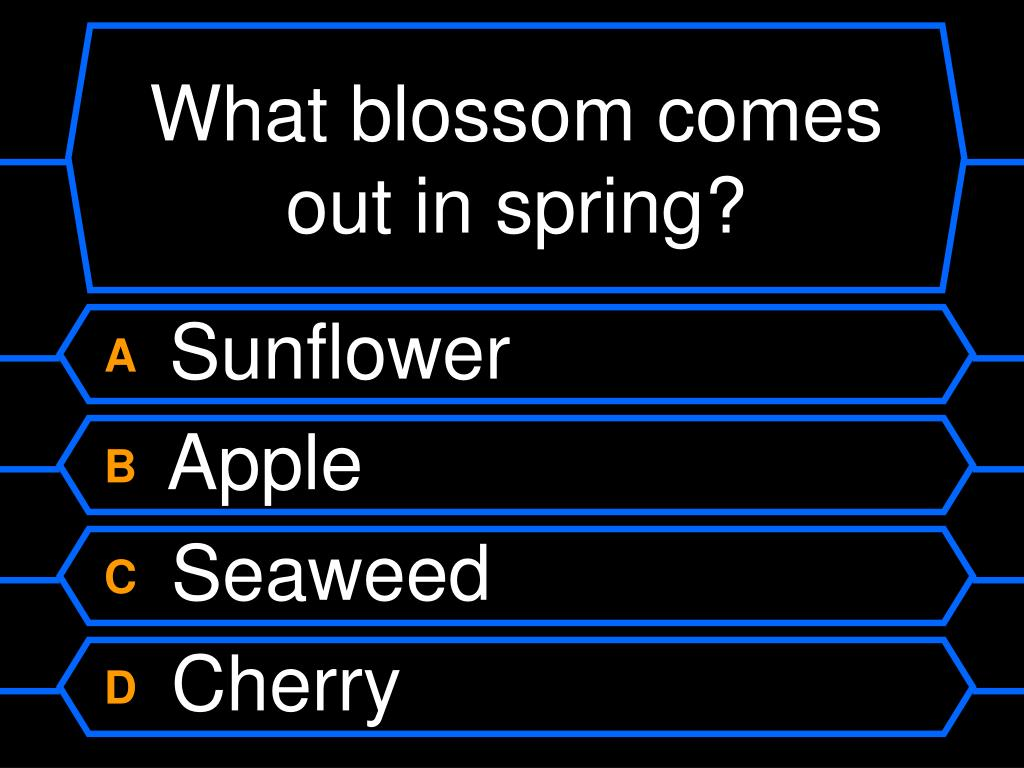 What blossom comes out in spring?