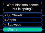 what blossom comes out in spring32