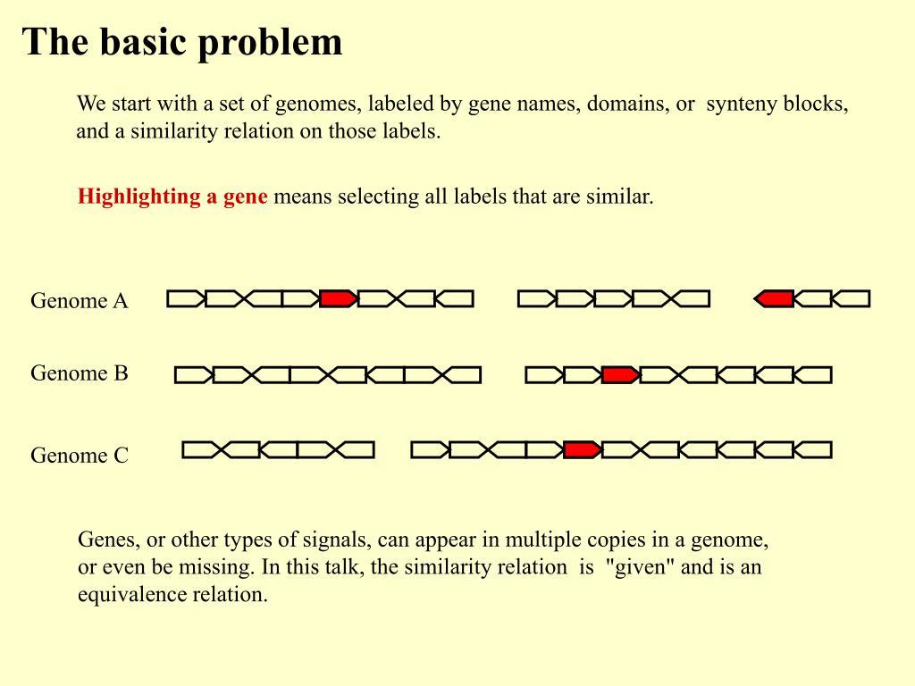 Genome A