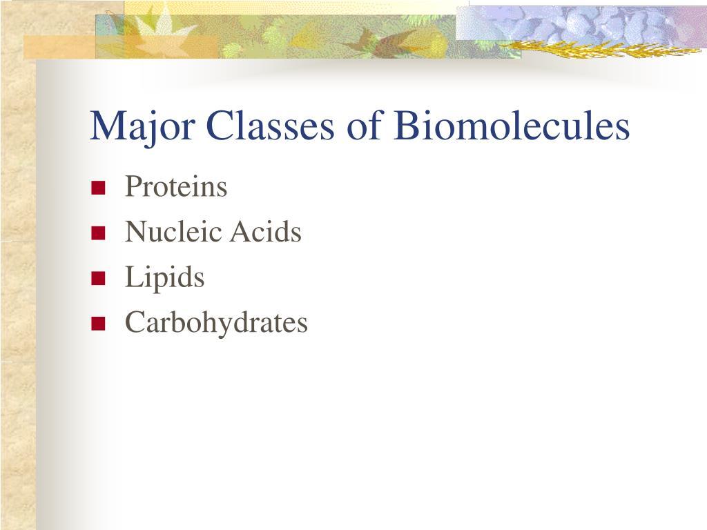 Major Classes of Biomolecules