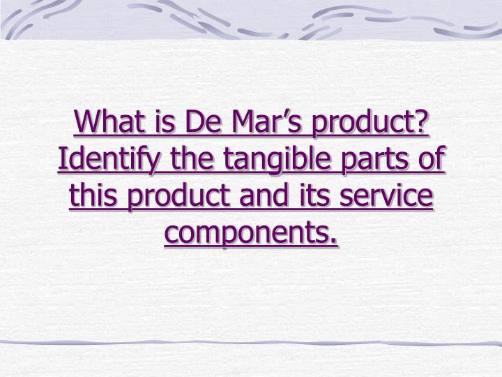What is de mar s product identify the tangible parts of this product and its service components