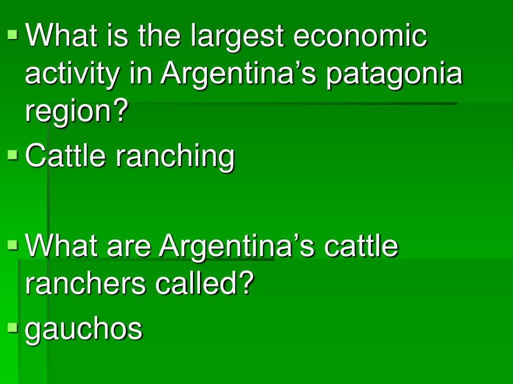 What is the largest economic activity in Argentina's patagonia region?